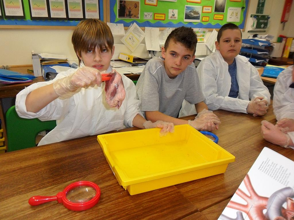 Science at Westhaven